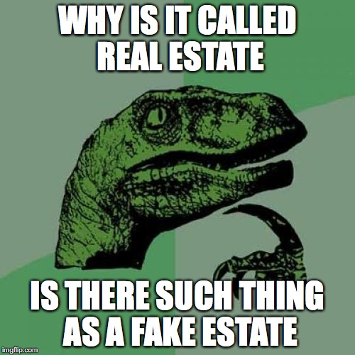 Philosoraptor Meme | WHY IS IT CALLED REAL ESTATE IS THERE SUCH THING AS A FAKE ESTATE | image tagged in memes,philosoraptor | made w/ Imgflip meme maker