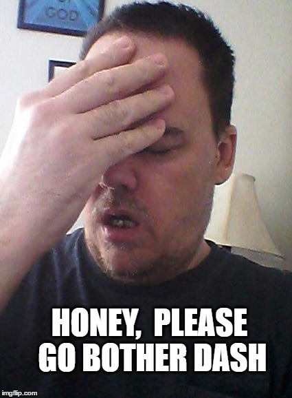 face palm | HONEY,  PLEASE GO BOTHER DASH | image tagged in face palm | made w/ Imgflip meme maker
