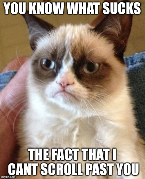 Grumpy Cat Meme | YOU KNOW WHAT SUCKS THE FACT THAT I CANT SCROLL PAST YOU | image tagged in memes,grumpy cat | made w/ Imgflip meme maker