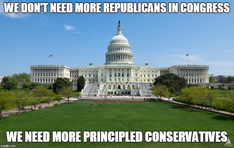 Don't get me started on the democrats. | WE DON'T NEED MORE REPUBLICANS IN CONGRESS WE NEED MORE PRINCIPLED CONSERVATIVES | image tagged in capital,republicans,conservatives,government corruption,hypocrisy | made w/ Imgflip meme maker