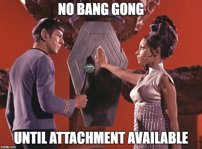 Spock T'pring Attachment Unavailable | NO BANG GONG UNTIL ATTACHMENT AVAILABLE | image tagged in spock t'pring attachment unavailable | made w/ Imgflip meme maker
