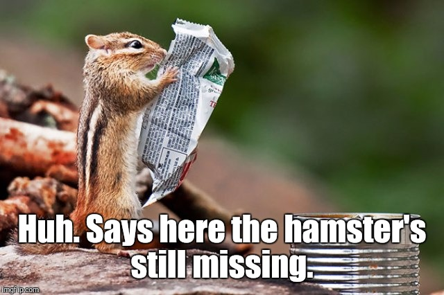 zz86x.jpg | Huh. Says here the hamster's still missing. | image tagged in zz86xjpg | made w/ Imgflip meme maker