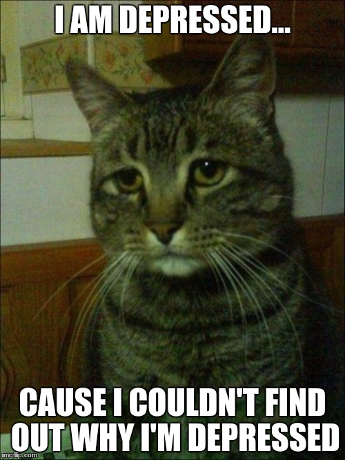 Depressed Cat |  I AM DEPRESSED... CAUSE I COULDN'T FIND OUT WHY I'M DEPRESSED | image tagged in memes,depressed cat | made w/ Imgflip meme maker