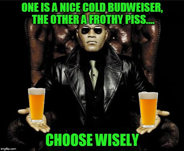ONE IS A NICE COLD BUDWEISER, THE OTHER A FROTHY PISS.... CHOOSE WISELY | made w/ Imgflip meme maker