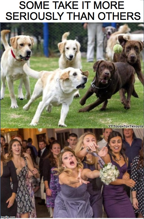 "Catching a ""Fly"" Ball 