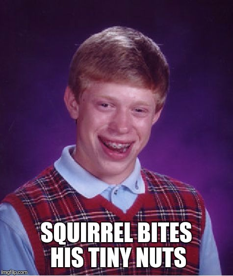 Bad Luck Brian Meme | SQUIRREL BITES HIS TINY NUTS | image tagged in memes,bad luck brian | made w/ Imgflip meme maker