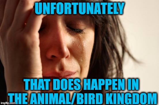 First World Problems Meme | UNFORTUNATELY THAT DOES HAPPEN IN THE ANIMAL/BIRD KINGDOM | image tagged in memes,first world problems | made w/ Imgflip meme maker