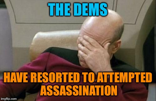 Captain Picard Facepalm Meme | THE DEMS HAVE RESORTED TO ATTEMPTED ASSASSINATION | image tagged in memes,captain picard facepalm | made w/ Imgflip meme maker