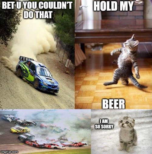 Hold my beer Kitty | image tagged in memes,cats,animals,hold my beer,crash,cute | made w/ Imgflip meme maker