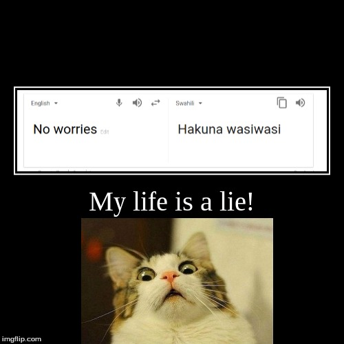 Hakuna Matata - er - Hakuna wasiwasi my behind! The Lion King LIED to us! | My life is a lie! | | image tagged in demotivationals,hakuna matata,my life is a lie,scared cat,lion king,lies | made w/ Imgflip demotivational maker
