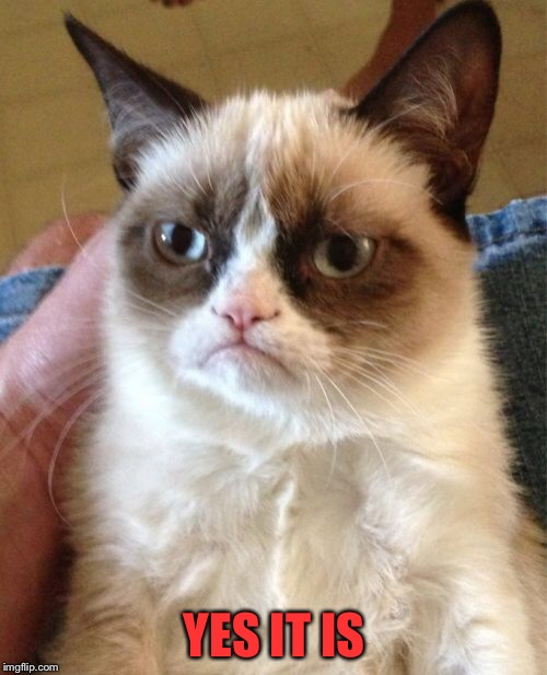 Grumpy Cat Meme | YES IT IS | image tagged in memes,grumpy cat | made w/ Imgflip meme maker