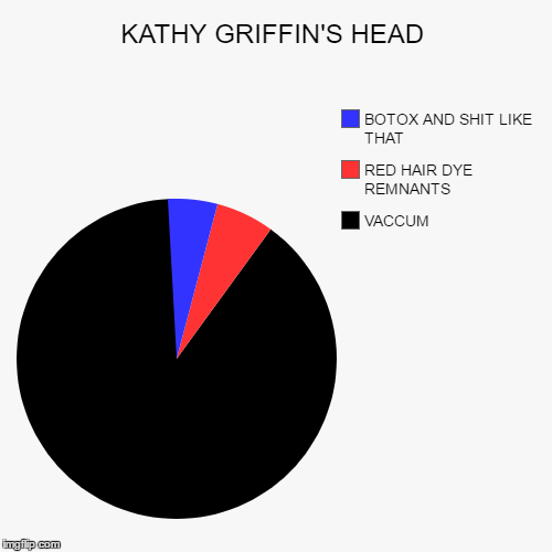 NOW LET'S CHOP IT OFF AND CHECK | KATHY GRIFFIN'S HEAD | VACCUM, RED HAIR DYE REMNANTS, BOTOX AND SHIT LIKE THAT | image tagged in funny,pie charts,college liberal,donald trump,kathy griffin | made w/ Imgflip pie chart maker