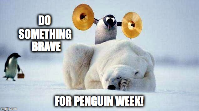 Penguin Week!!!  | DO FOR PENGUIN WEEK! SOMETHING BRAVE | image tagged in bravery | made w/ Imgflip meme maker