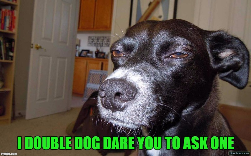 I DOUBLE DOG DARE YOU TO ASK ONE | made w/ Imgflip meme maker