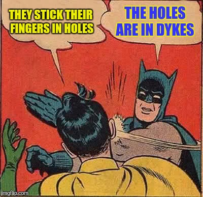 Batman Slapping Robin Meme | THEY STICK THEIR FINGERS IN HOLES THE HOLES ARE IN DYKES | image tagged in memes,batman slapping robin | made w/ Imgflip meme maker