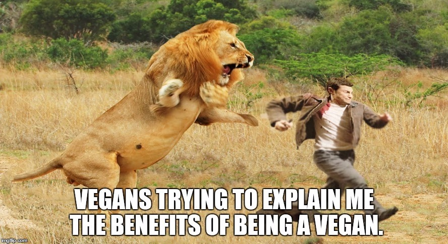 Who is with me? | image tagged in vegan,funny,memes | made w/ Imgflip meme maker