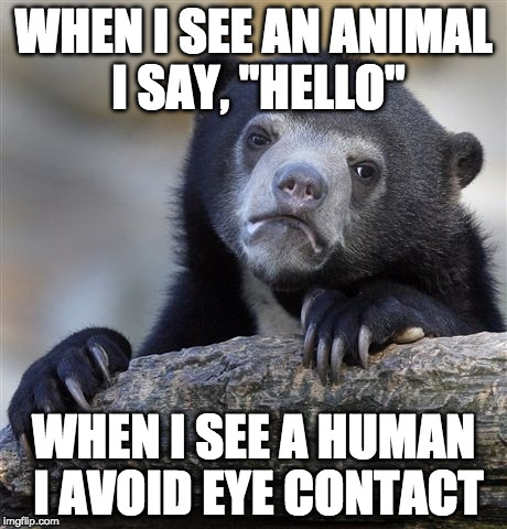 "Know what I mean? | WHEN I SEE AN ANIMAL I SAY, ""HELLO"" WHEN I SEE A HUMAN I AVOID EYE CONTACT 