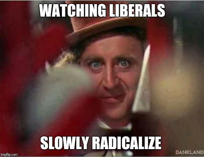 Watching Liberals Slowly Radicalize | WATCHING LIBERALS SLOWLY RADICALIZE | image tagged in liberals,radical,stupid liberals,triggered liberal,liberals problem,alt-left | made w/ Imgflip meme maker