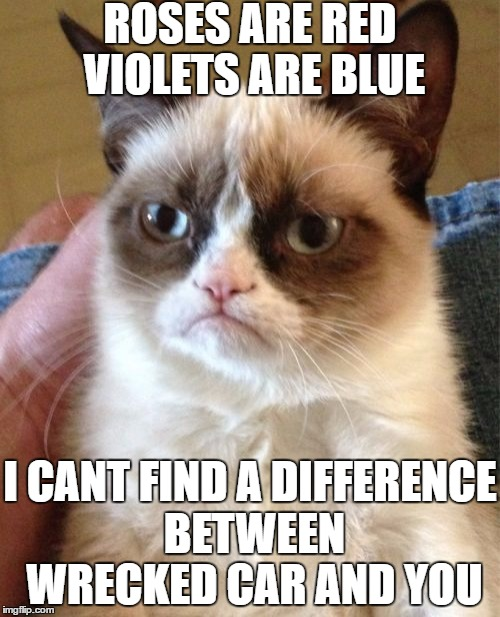 Grumpy Cat Meme | ROSES ARE RED VIOLETS ARE BLUE I CANT FIND A DIFFERENCE BETWEEN WRECKED CAR AND YOU | image tagged in memes,grumpy cat | made w/ Imgflip meme maker