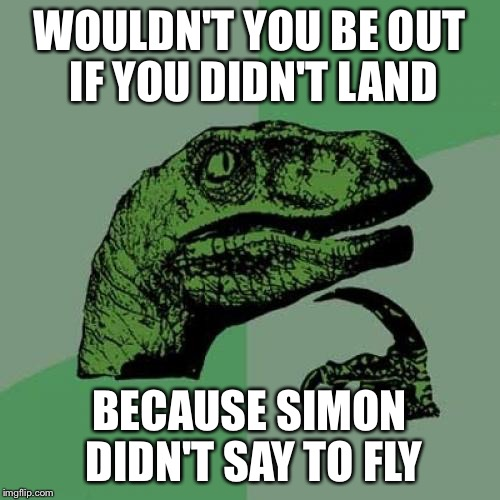 Philosoraptor Meme | WOULDN'T YOU BE OUT IF YOU DIDN'T LAND BECAUSE SIMON DIDN'T SAY TO FLY | image tagged in memes,philosoraptor | made w/ Imgflip meme maker
