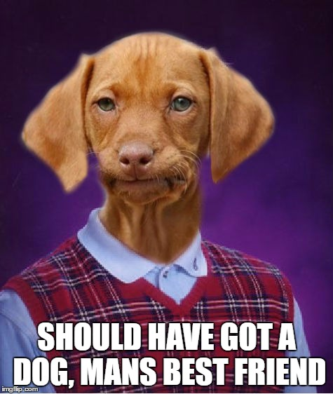 SHOULD HAVE GOT A DOG, MANS BEST FRIEND | made w/ Imgflip meme maker