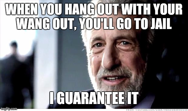 I Guarantee It Meme | WHEN YOU HANG OUT WITH YOUR WANG OUT, YOU'LL GO TO JAIL I GUARANTEE IT | image tagged in memes,i guarantee it | made w/ Imgflip meme maker