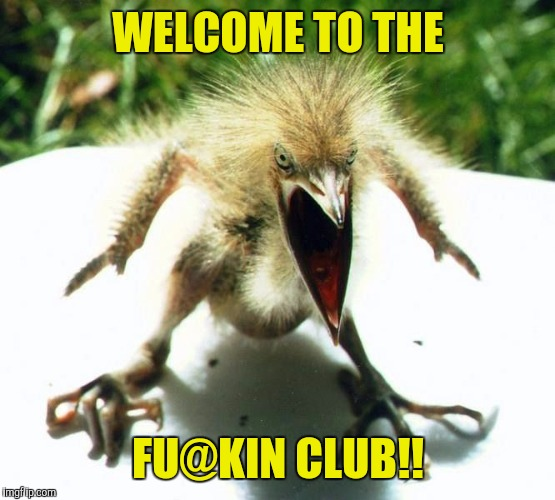 Angry bird | WELCOME TO THE FU@KIN CLUB!! | image tagged in angry bird | made w/ Imgflip meme maker