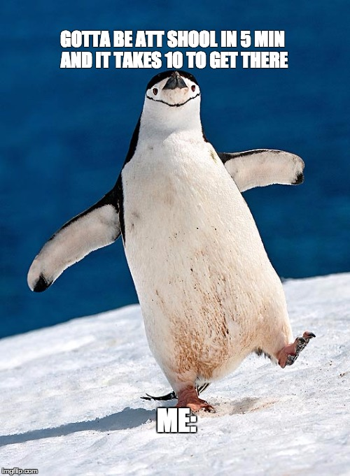 Me tryna hurry up | GOTTA BE ATT SHOOL IN 5 MIN AND IT TAKES 10 TO GET THERE ME: | image tagged in socially awesome awkward penguin,penguin | made w/ Imgflip meme maker
