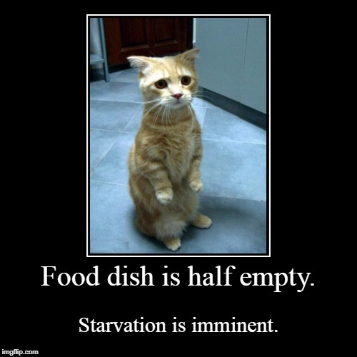 Food dish is half empty. | Starvation is imminent. | image tagged in funny,demotivationals | made w/ Imgflip demotivational maker