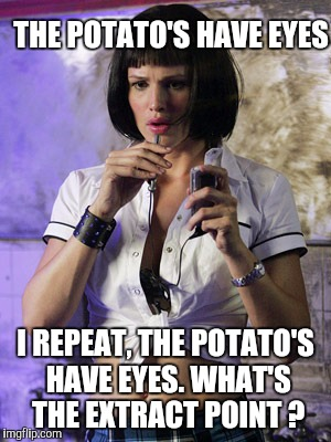 Memes | THE POTATO'S HAVE EYES I REPEAT, THE POTATO'S HAVE EYES. WHAT'S​ THE EXTRACT POINT ? | image tagged in memes | made w/ Imgflip meme maker