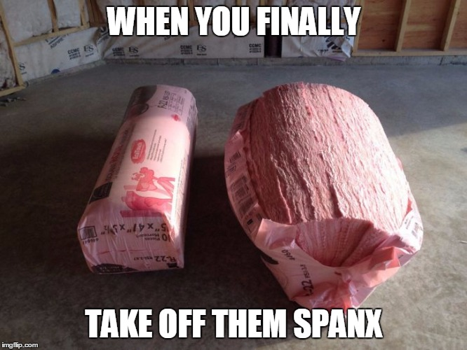 Spanx | WHEN YOU FINALLY TAKE OFF THEM SPANX | image tagged in spanx,when you,when you finally,fat | made w/ Imgflip meme maker