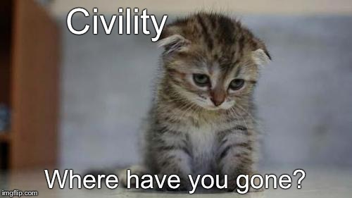 Sad kitten | Civility Where have you gone? | image tagged in sad kitten | made w/ Imgflip meme maker