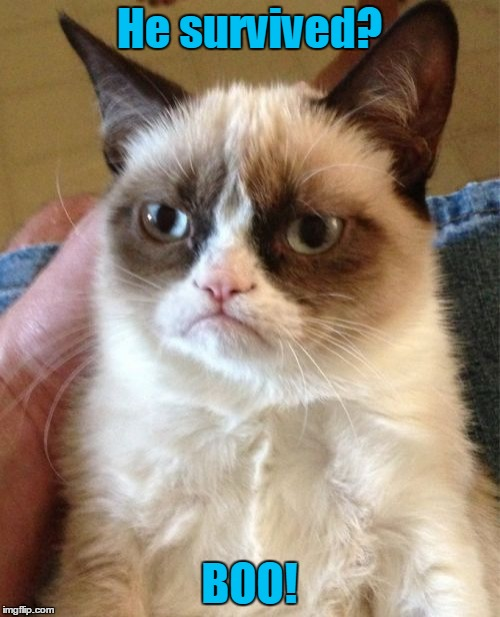 Grumpy Cat Meme | He survived? BOO! | image tagged in memes,grumpy cat | made w/ Imgflip meme maker