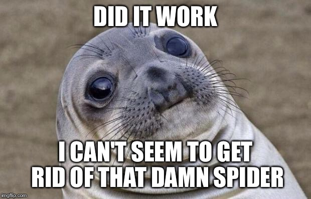 Awkward Moment Sealion Meme | DID IT WORK I CAN'T SEEM TO GET RID OF THAT DAMN SPIDER | image tagged in memes,awkward moment sealion | made w/ Imgflip meme maker