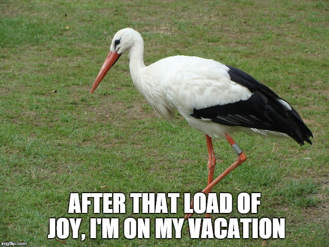 AFTER THAT LOAD OF JOY, I'M ON MY VACATION | made w/ Imgflip meme maker