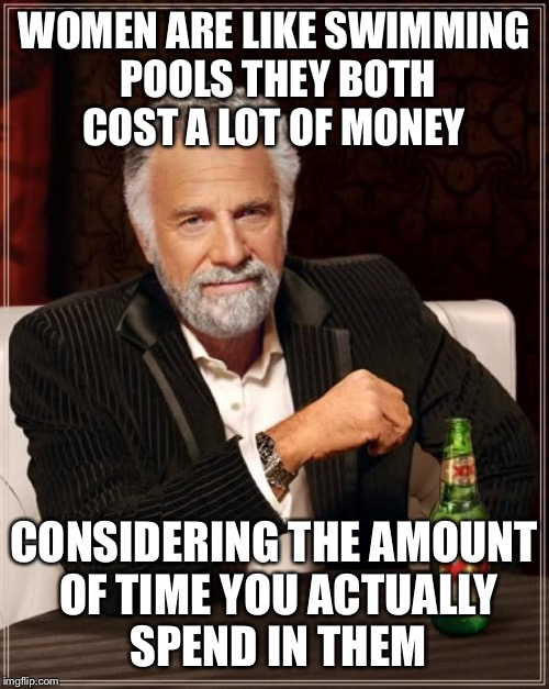 Taking a dip less than you would like  | WOMEN ARE LIKE SWIMMING POOLS THEY BOTH COST A LOT OF MONEY CONSIDERING THE AMOUNT OF TIME YOU ACTUALLY SPEND IN THEM | image tagged in memes,the most interesting man in the world,funny | made w/ Imgflip meme maker
