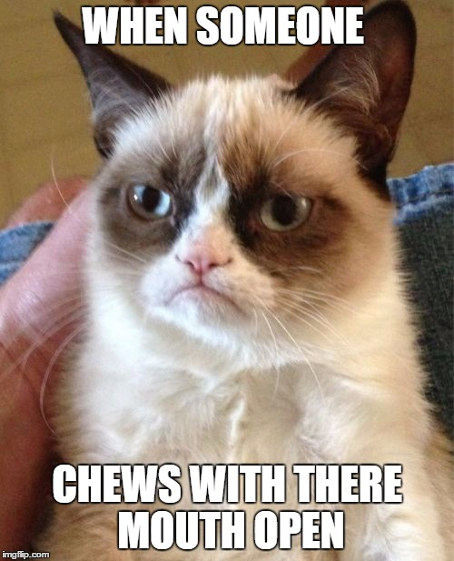 Grumpy Cat Meme | WHEN SOMEONE CHEWS WITH THERE MOUTH OPEN | image tagged in memes,grumpy cat | made w/ Imgflip meme maker