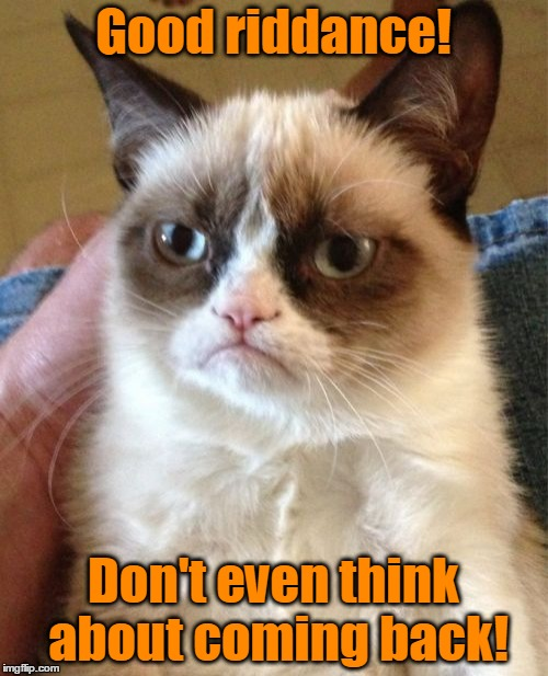 Grumpy Cat Meme | Good riddance! Don't even think about coming back! | image tagged in memes,grumpy cat | made w/ Imgflip meme maker