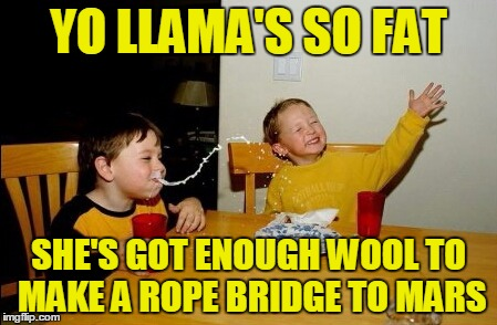 YO LLAMA'S SO FAT SHE'S GOT ENOUGH WOOL TO MAKE A ROPE BRIDGE TO MARS | made w/ Imgflip meme maker
