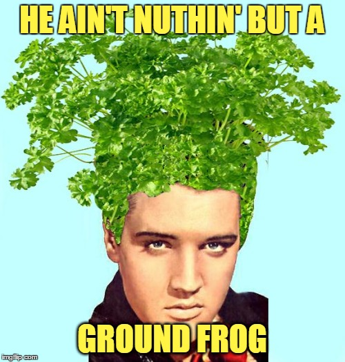 HE AIN'T NUTHIN' BUT A GROUND FROG | made w/ Imgflip meme maker