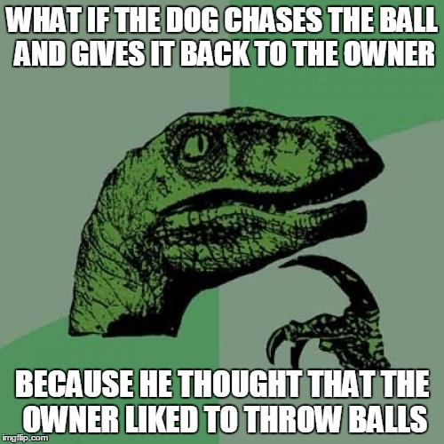 opens up a whole new possibility  | WHAT IF THE DOG CHASES THE BALL AND GIVES IT BACK TO THE OWNER BECAUSE HE THOUGHT THAT THE OWNER LIKED TO THROW BALLS | image tagged in memes,philosoraptor | made w/ Imgflip meme maker
