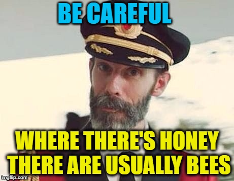 Captain Obvious | BE CAREFUL WHERE THERE'S HONEY THERE ARE USUALLY BEES | image tagged in captain obvious | made w/ Imgflip meme maker