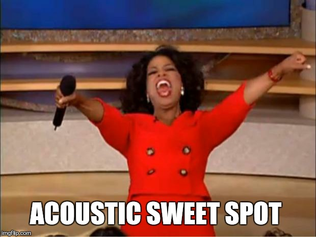 Oprah You Get A Meme | ACOUSTIC SWEET SPOT | image tagged in memes,oprah you get a | made w/ Imgflip meme maker