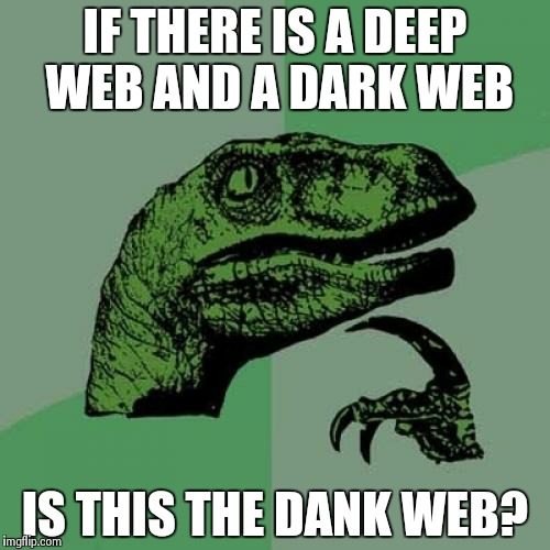 The Most Important Question of Life  | IF THERE IS A DEEP WEB AND A DARK WEB IS THIS THE DANK WEB? | image tagged in memes,philosoraptor | made w/ Imgflip meme maker