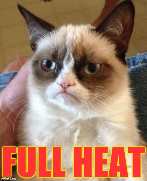 Grumpy Cat Meme | FULL HEAT | image tagged in memes,grumpy cat | made w/ Imgflip meme maker