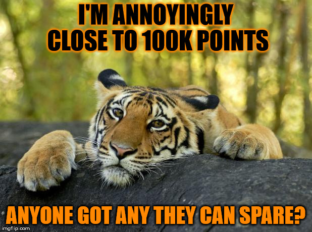 I don't always ask for points, but when I do it's because I'm nearly at 100k. | I'M ANNOYINGLY CLOSE TO 100K POINTS ANYONE GOT ANY THEY CAN SPARE? | image tagged in confession tiger,100k points,help me,please | made w/ Imgflip meme maker