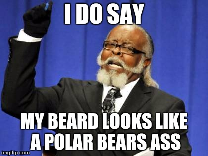 Too Damn High Meme | I DO SAY MY BEARD LOOKS LIKE A POLAR BEARS ASS | image tagged in memes,too damn high | made w/ Imgflip meme maker
