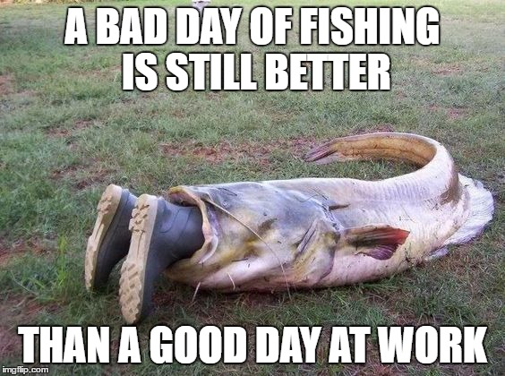 That poor fish(erman) | A BAD DAY OF FISHING IS STILL BETTER THAN A GOOD DAY AT WORK | image tagged in work,fishing for upvotes | made w/ Imgflip meme maker