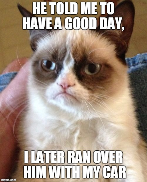 Grumpy Cat Meme | HE TOLD ME TO HAVE A GOOD DAY, I LATER RAN OVER HIM WITH MY CAR | image tagged in memes,grumpy cat | made w/ Imgflip meme maker