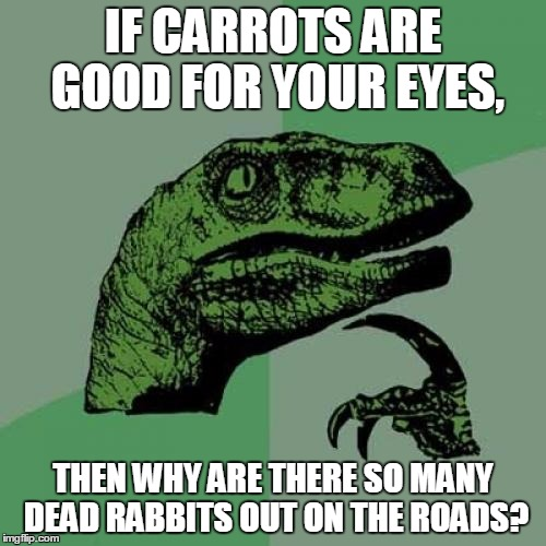 Philosoraptor Meme | IF CARROTS ARE GOOD FOR YOUR EYES, THEN WHY ARE THERE SO MANY DEAD RABBITS OUT ON THE ROADS? | image tagged in memes,philosoraptor | made w/ Imgflip meme maker